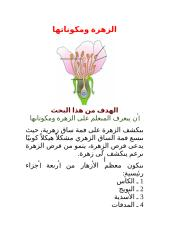 الزهرة ومكوناتها.docx