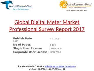 Global Digital Meter Market Professional Survey Report 2017.pptx