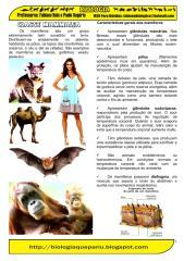 (2) mamiferos.pdf